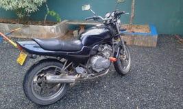 Bici della giada di Honda immagini stock