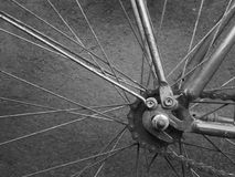 Bici della ruota posteriore fotografia stock libera da diritti