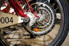 Bici delle ruote per affitto nella città Fotografie Stock
