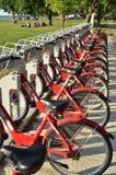 Bici di colore rosso di Madison Fotografie Stock Libere da Diritti