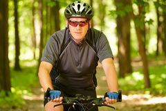 Bici di guida dell'uomo in foresta Fotografia Stock