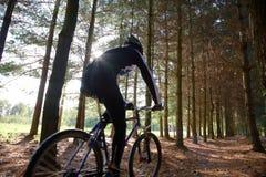 Bici di montagna Fotografie Stock