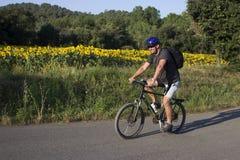 Bici di montagna di guida dell'uomo Fotografia Stock