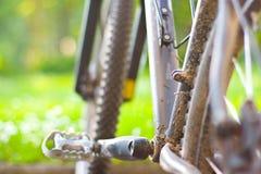 Bici di montagna sporca Fotografie Stock Libere da Diritti