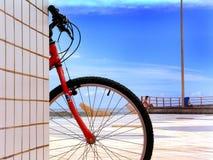 Bici di Sun Fotografie Stock