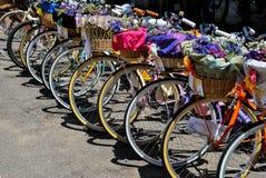 Bici e fiori Fotografia Stock