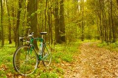 Bici en bosque Fotos de archivo libres de regalías
