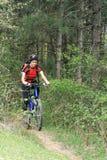 Bici en el bosque Imagen de archivo libre de regalías