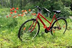 Bici en el prado Foto de archivo libre de regalías