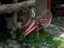 Bici en la hierba verde Fotografía de archivo