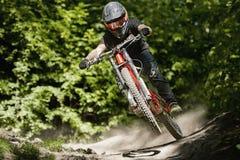 Bici Forest Downhill de Mountainbiker foto de archivo libre de regalías