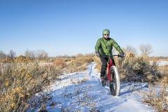 Bici grassa di guida nell'inverno Immagine Stock Libera da Diritti