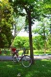 Bici nel parco del giardino Fotografia Stock Libera da Diritti