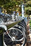 Bici per affitto verticale Fotografia Stock