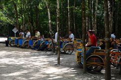 Bici taxi in Coba, Mexico Royalty Free Stock Photography
