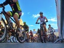 Bici verticale 2014 di Torino Immagini Stock