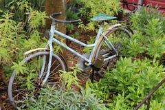 Bici vieja Imagen de archivo libre de regalías
