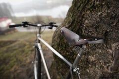 Bici vieja cerca del árbol Fotografía de archivo libre de regalías