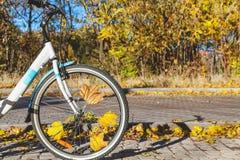 Bici y otoño Diagrama urbano Fotografía de archivo libre de regalías