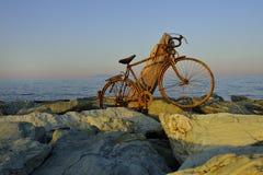 Bicicle parcheggiato Fotografia Stock Libera da Diritti