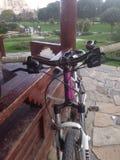 Bicicleta imagens de stock royalty free
