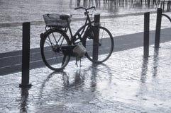 Bicicleta Imagem de Stock