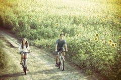 Bicicleta adolescente da equitação dos pares no campo do girassol foto de stock royalty free