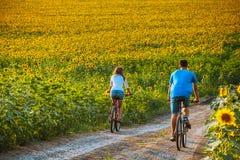 Bicicleta adolescente da equitação dos pares no campo do girassol Imagens de Stock Royalty Free