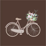Bicicleta bonito do vintage fotografia de stock royalty free