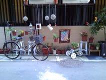 Bicicleta Cadeira Árvore potted terra Imagens de Stock