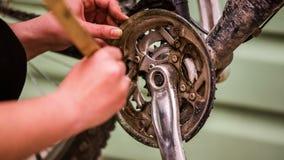Bicicleta Chainring de la limpieza de la chica joven con el cepillo metrajes