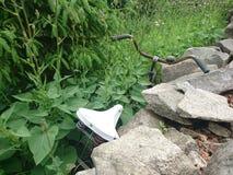 Bicicleta coberto de vegetação Fotos de Stock Royalty Free
