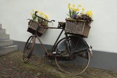 Bicicleta com cestas da flor Foto de Stock