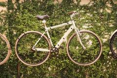 A bicicleta com verde sae do estilo do vintage Fotos de Stock