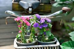 Bicicleta con la decoración de las flores Fotografía de archivo