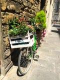 Bicicleta con las flores Imagen de archivo