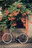 Bicicleta con las flores en el fondo Imagenes de archivo
