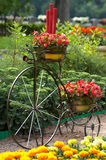 Bicicleta de la vendimia Fotografía de archivo libre de regalías