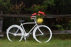 Bicicleta de la vendimia con las flores imagen de archivo libre de regalías