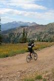Bicicleta de montanha foto de stock royalty free