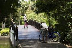 Bicicleta de passeio e biking dos povos dos viajantes em Sri Nakhon Khuean Khan Park e jardim botânico ou parque do kachao do gol Fotografia de Stock Royalty Free