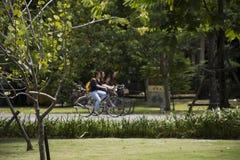 Bicicleta de passeio e biking dos povos dos viajantes em Sri Nakhon Khuean Khan Park e jardim botânico ou parque do kachao do gol Imagens de Stock