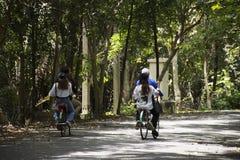 Bicicleta de passeio e biking dos povos dos viajantes em Sri Nakhon Khuean Khan Park e jardim botânico ou parque do kachao do gol Imagem de Stock Royalty Free