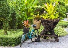 Bicicleta decorada com plantas Fotografia de Stock Royalty Free