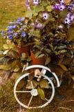 Bicicleta decorativa con las flores en el jardín Imágenes de archivo libres de regalías