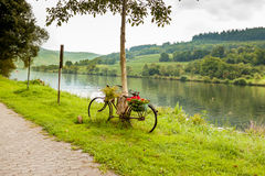 Bicicleta decorativa pelo rio germany Fotografia de Stock Royalty Free