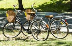 Bicicleta del vintage Fotografía de archivo libre de regalías