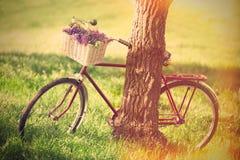 Bicicleta del vintage Imagenes de archivo