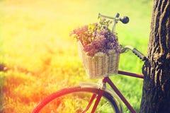 Bicicleta del vintage Fotografía de archivo