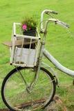 Bicicleta del vintage en el jardín Imagenes de archivo